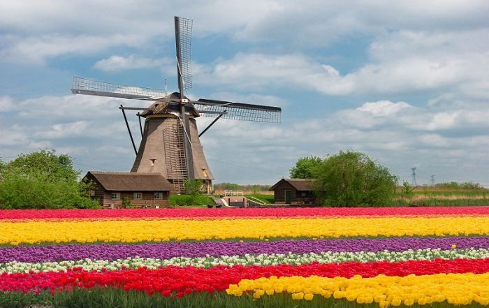 Is Holland a tax haven